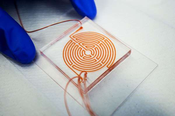 'Labyrinth' chip could help monitor aggressive cancer stem cells