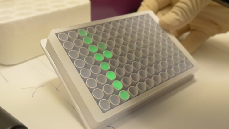 Light-based cancer therapy moves through clinical trials
