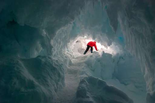 Little is known about the flora and fauna that live in subglacial caves in Antarctica, and scientists say finding and exploring