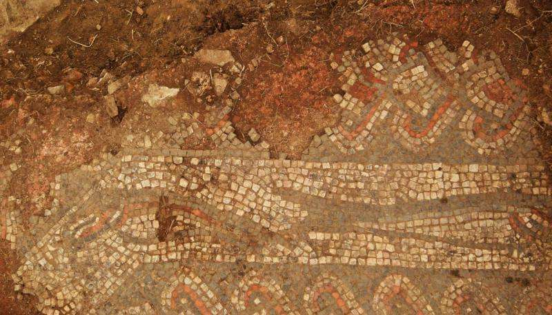 Lufton Villa excavations reveal new details about famous fish mosaic