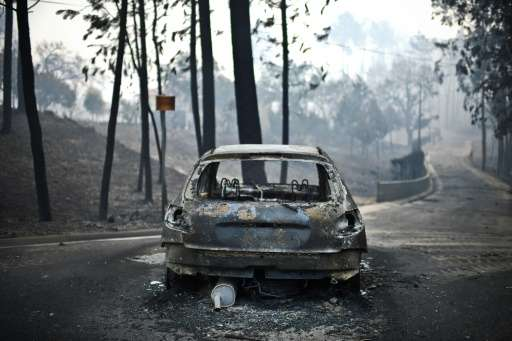 Many people died in their cars in the forest fires sweeping central Portugal