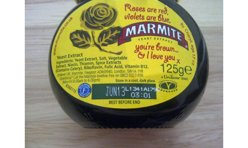 Marmite may be brain food, study says