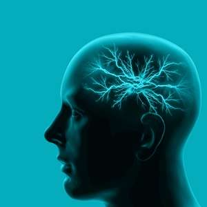 Memory insight may prove beneficial for those with brain damage