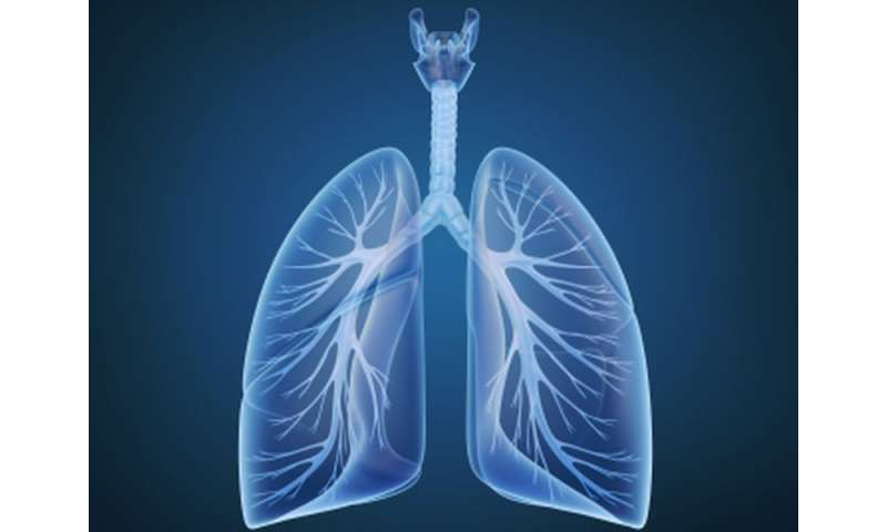 Menopause linked to accelerated decline in lung function