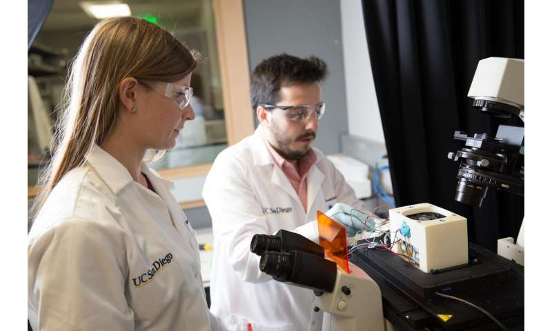 Method to identify bacteria in blood samples works in hours instead of days