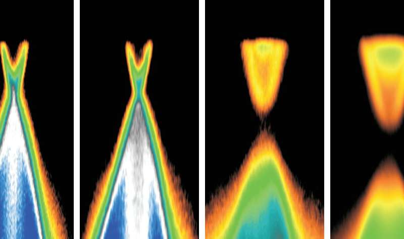 Missing link between new topological phases of matter discovered