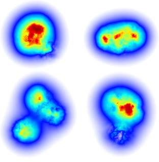 Model identifies a high degree of fluctuations in gluons as essential to explaining proton structure