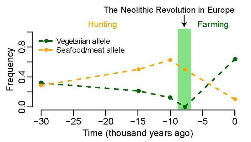Modern European genes may favor vegetarianism
