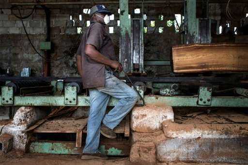 """Mozambique's wood processing industry has embraced the new government measures to fight illegal logging, """"as the processing"""