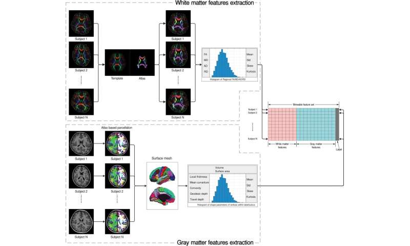 Brain Imaging Reveals Adhd As >> Mri Shows Brain Differences Among Adhd Patients