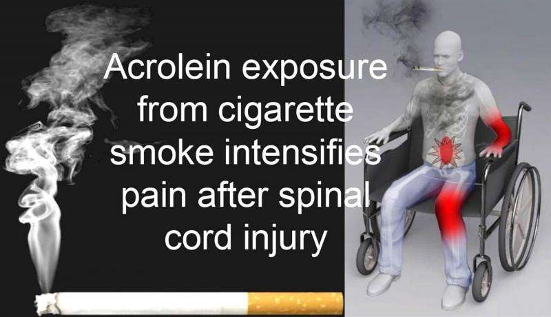 Neurotoxin in cigarette smoke worsens pain in spinal cord injuries