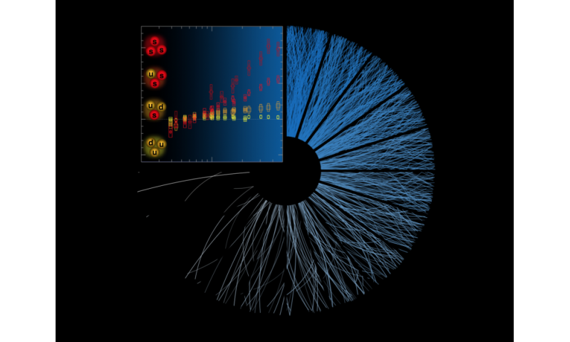 As the number of particles produced in proton collisions (the blue lines) increase, the more of these so-called strange hadrons are measured (as shown by ...