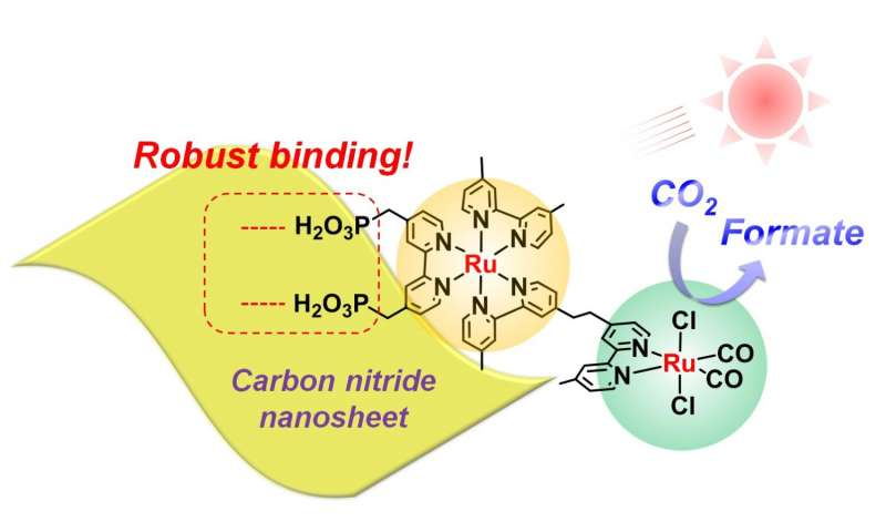 New carbon nitride material coupled with ruthenium enhances visible-light CO2 reduction in water