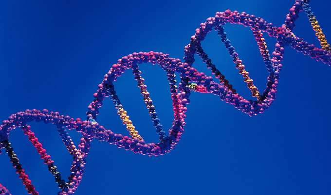 New digital method enhances understanding of changes in DNA's makeup