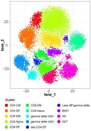 New kit helps researchers make sense of mass cytometry datasets to uncover cell subsets
