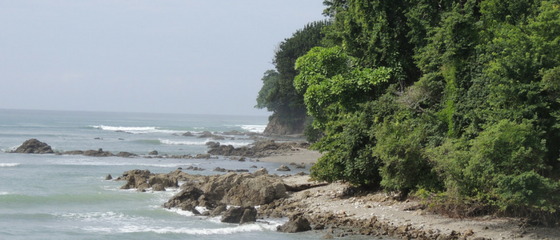New marine protected area designated in Costa Rica