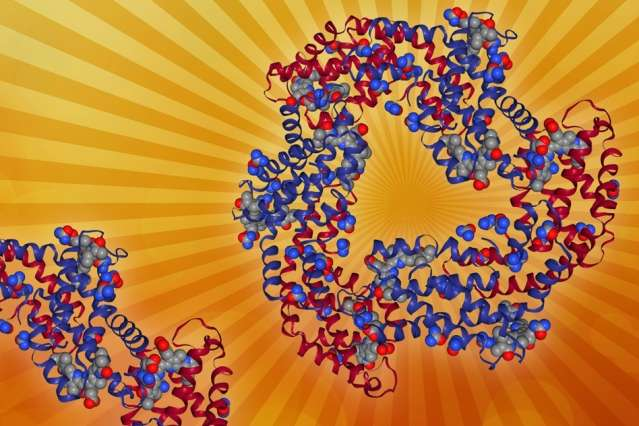 New model could help scientists design materials for artificial photosynthesis