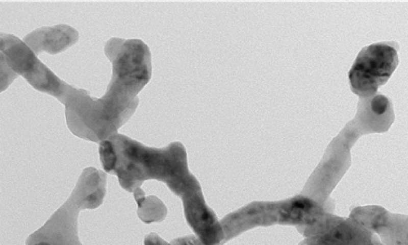 New nanofiber marks important step in next generation battery development