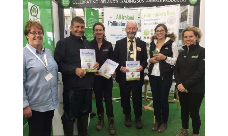 New pollinator guidelines aim to get Ireland's farmland buzzing again