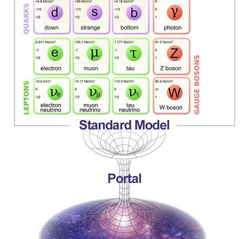 New portal to unveil the dark sector of the Universe