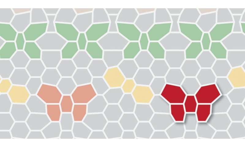 New quantum phenomena in graphene superlattices