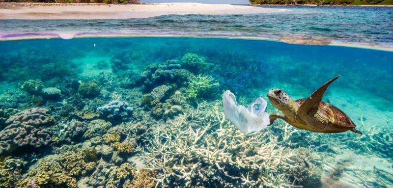 New rules urgently needed to protect our oceans, scientists warn