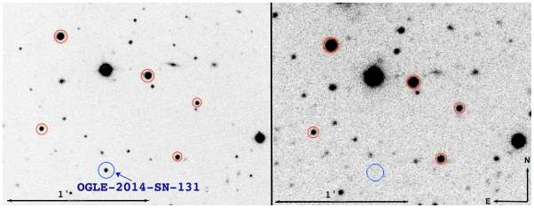 New slowly evolving Type Ibn supernova discovered