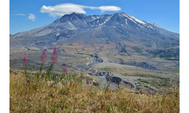 New study analyses volcanic fatalities in more detail than ever before