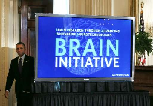 Obama's Brain Research through Advancing Innovative Neurotechnologies (BRAIN) initiative promised a multidisciplinary approach,
