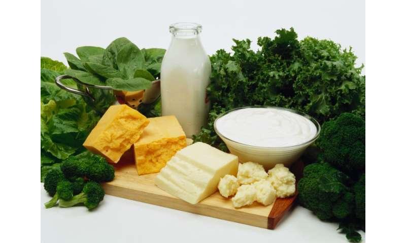 Older bones benefit from dairy plus vitamin D