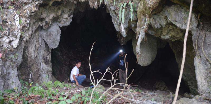 Old teeth from a rediscovered cave show humans were in Indonesia more than 63,000 years ago