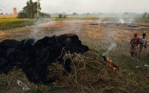 On Delhi's outskirts farmers are busy burning crop residue to clear their land before the new harvest and the acrid smoke has al