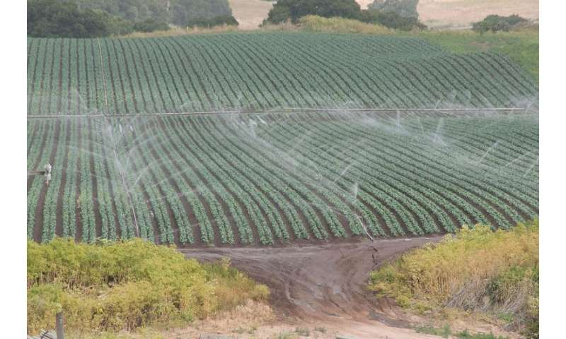 Overuse of water threatens global food supply