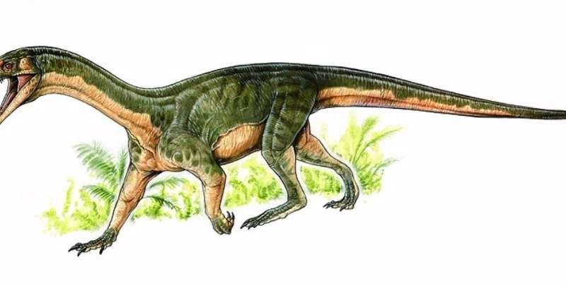 Les paléobiologistes font de nouvelles découvertes intrigantes sur les ancêtres des dinosaures