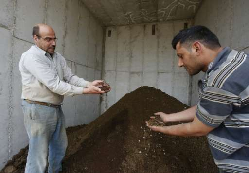 Palestinian Kamal al-Jebrini (L) holds a handful of cow dung at the Jebrini dairy farm in the West Bank town of Hebron, where ma