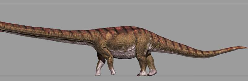 Patagotitan mayorum: New study describes the biggest dinosaur ever
