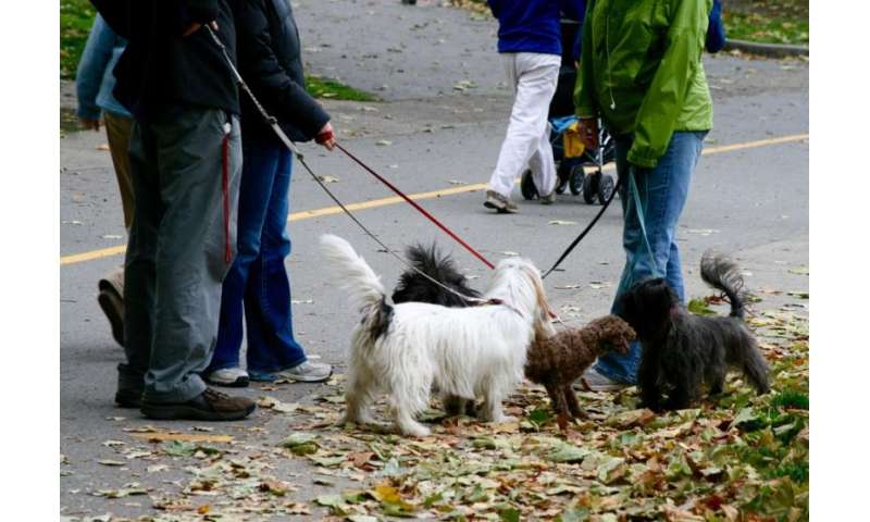 Pets strengthen neighbourhood ties