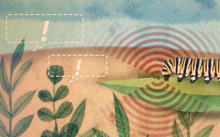 Plants call 911 to help their neighbors