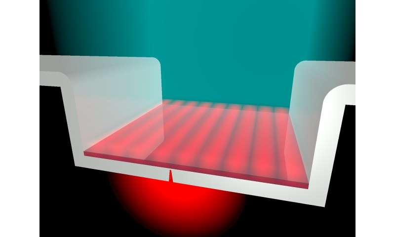 Plasmons in an open box create miniature laser