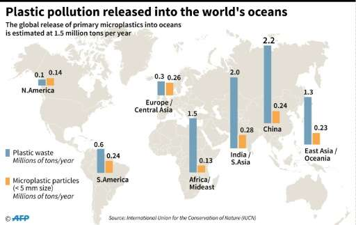 Plastic pollution in the world's oceans