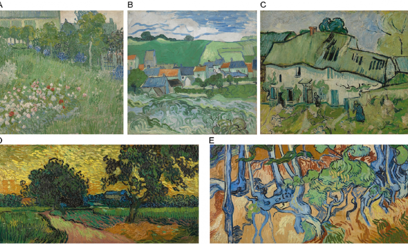 Prior knowledge may influence how adults view van Goghs