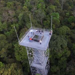 Project uses drones to monitor the health of the Amazon