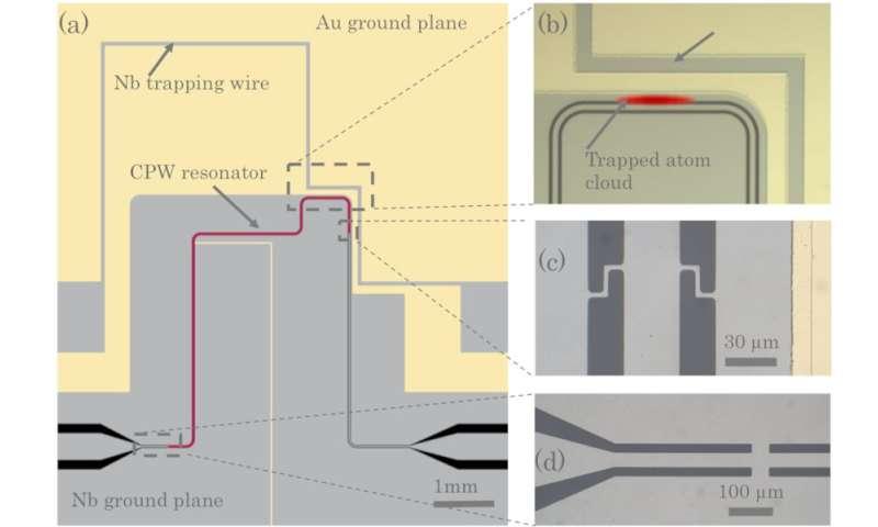 Quantum coupling