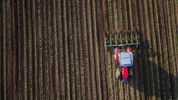 Estudo de radiocarbono fornece uma visão sobre a dinâmica do carbono do solo e os efeitos da agricultura
