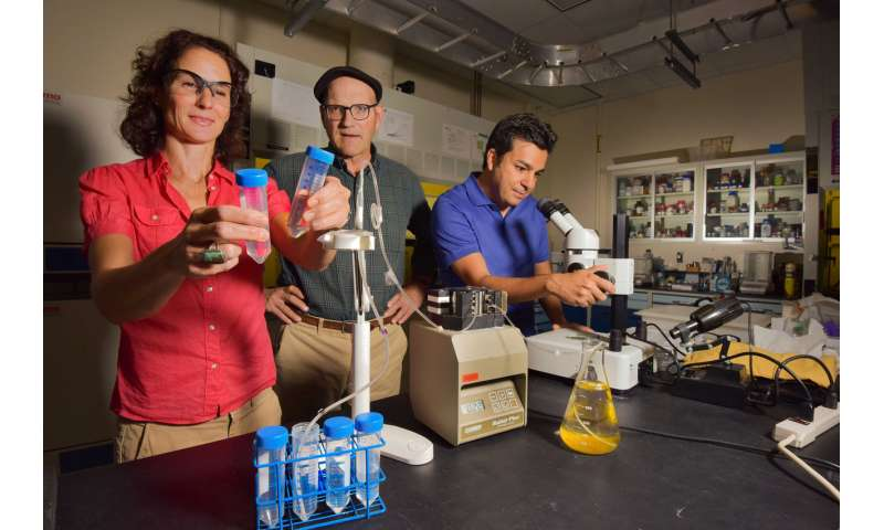 Reducing power plants' freshwater consumption with Sandia's new silica filter