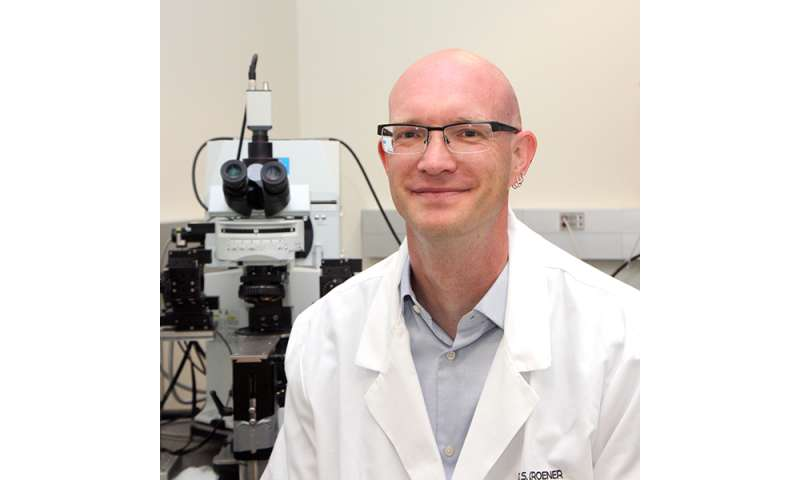 Researcher finds potential way to reduce drug cravings