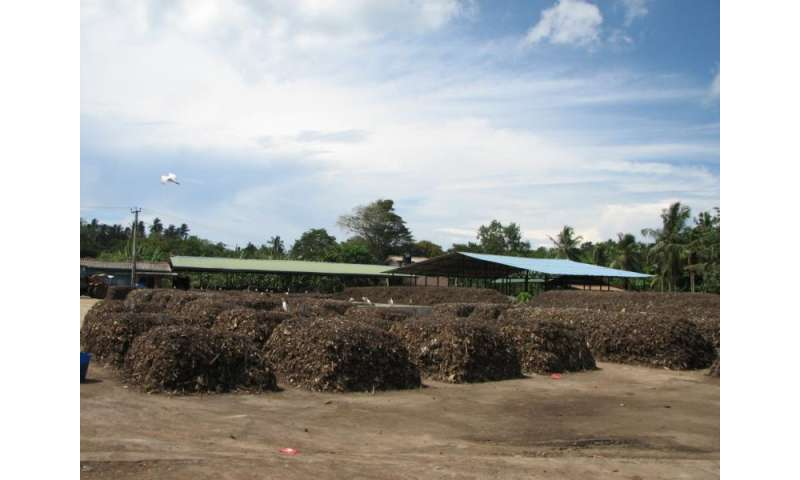 Research recommends composting as a viable option for solid waste management in Sri Lanka
