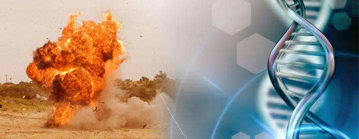 Sam Houston state researchers study DNA from explosives
