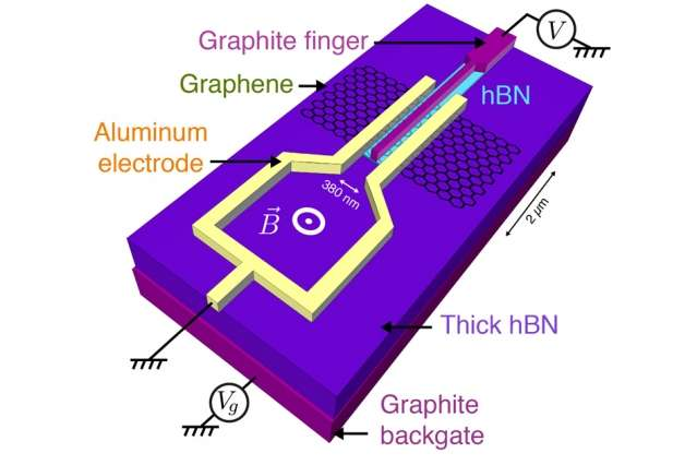 Sandwiched between superconductors, graphene adopts exotic electronic states