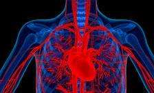 Scans could replace invasive procedures for assessing heart patients, new research finds